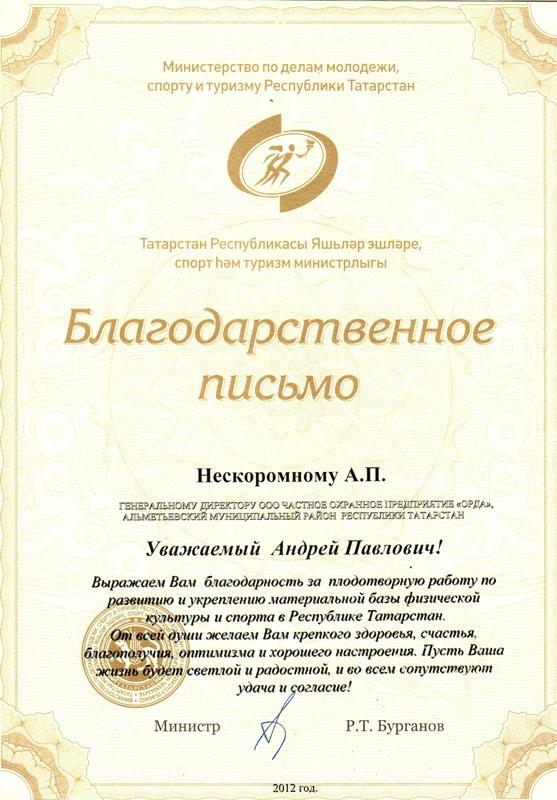 Благодарственное письмо от имени Министерства по делам молодежи, спорту и туризму РТ